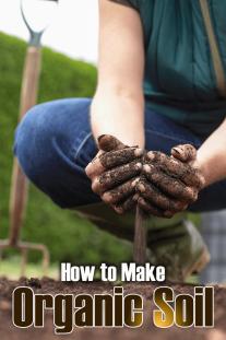 How to Make Organic Soil