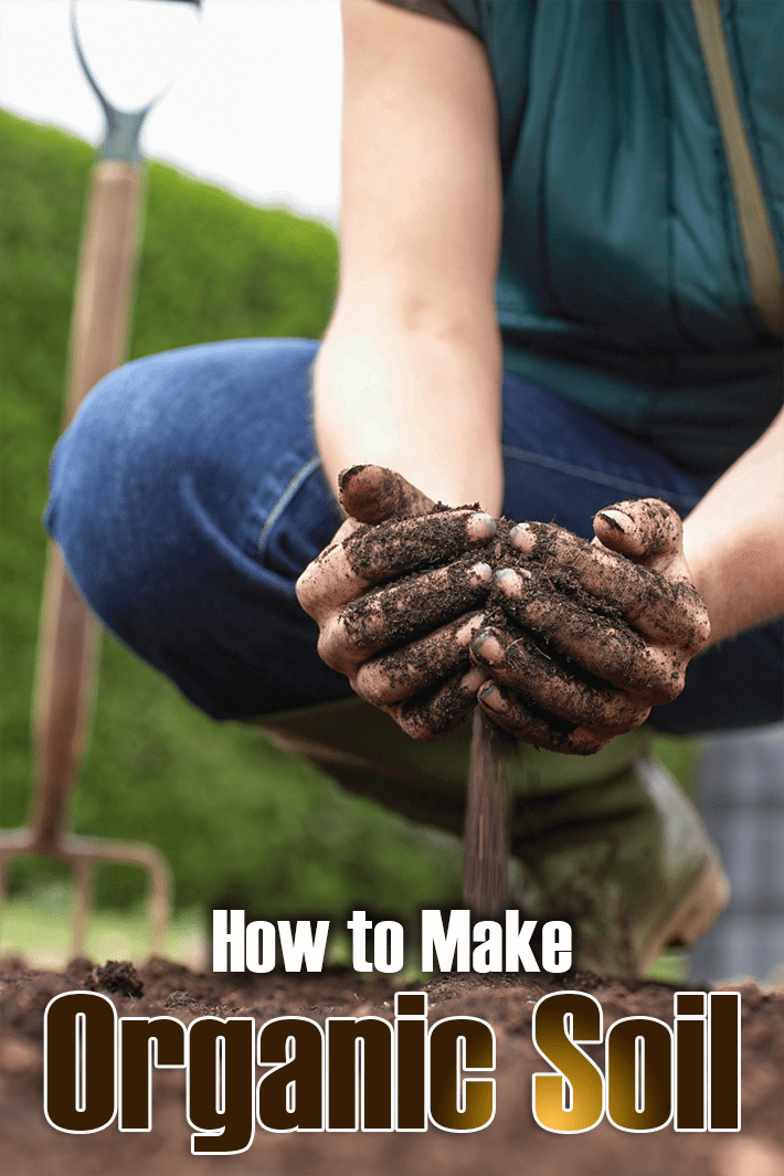 How to Make Organic Soil - Quiet Corner