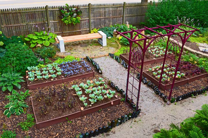 10 Ways to Grow a Shade Garden