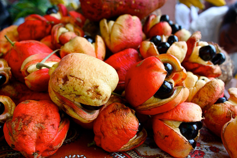 Top 10 Most Exotic Fruits You Should Try