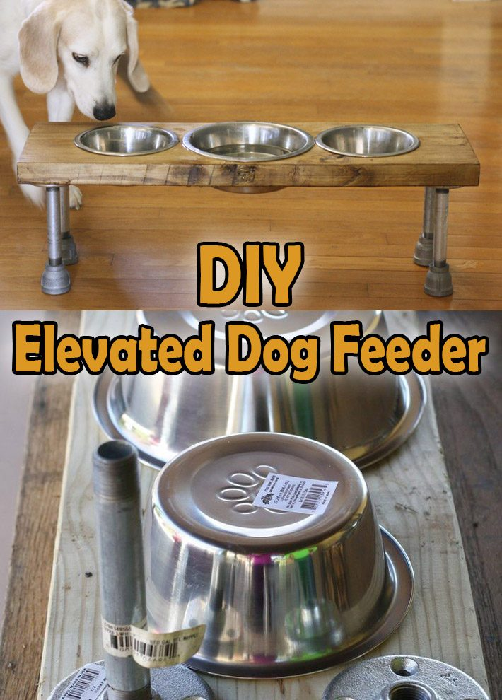 DIY – How to Make an Elevated Dog Feeder