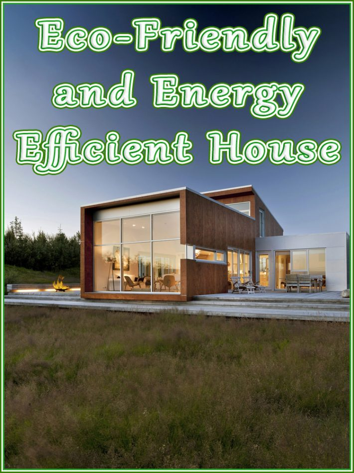 Eco-Friendly and Energy Efficient House