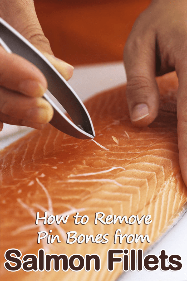 How To Easily Remove Pin Bones From Salmon Fillet - Quiet Corner