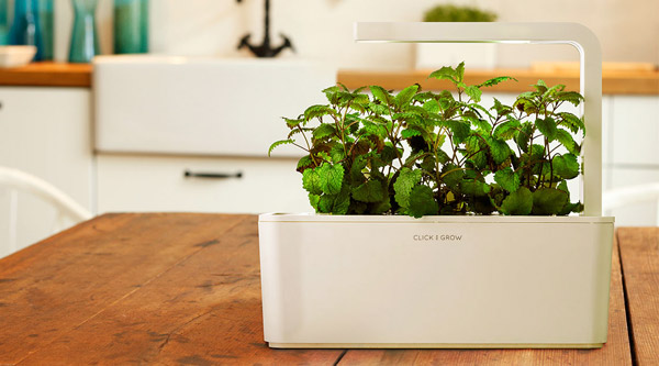 Indoor Hydroponic Systems - Easy Home Garden
