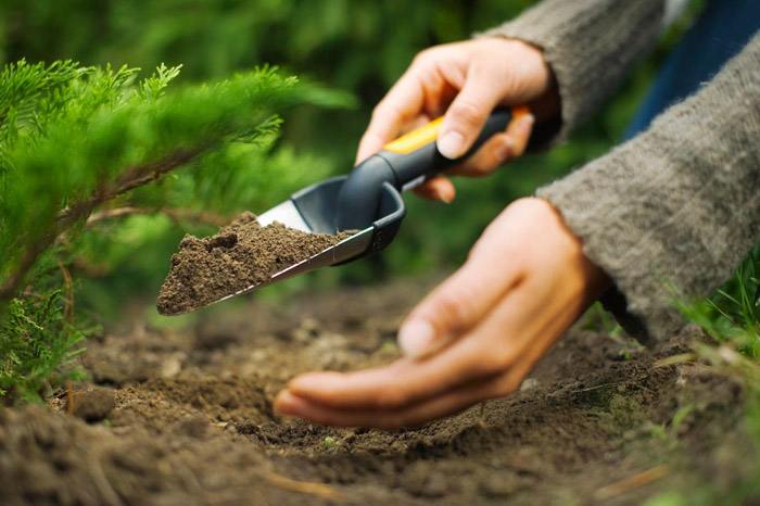 Gardening Tools Every Gardener Should Have