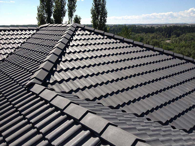 Roofing materials the roofs of various solid materials a for Roofing material options