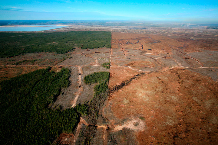 10% of Earth's wilderness is destroyed in just 25 years