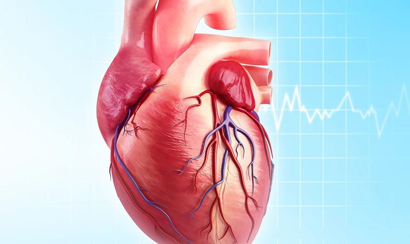 Can Extreme Exercise Damage Your Heart