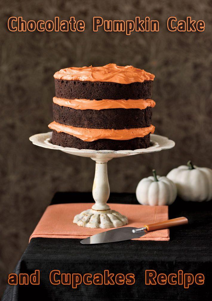 Chocolate Pumpkin Cake and Cupcakes Recipe