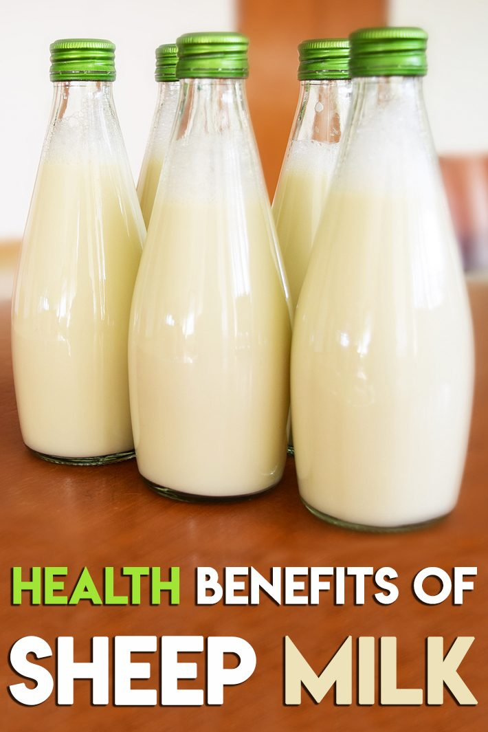 Health Benefits of Sheep Milk