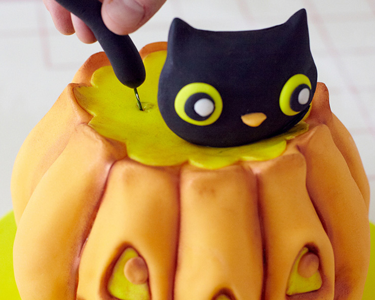 Kitty Cat in a Pumpkin Cake
