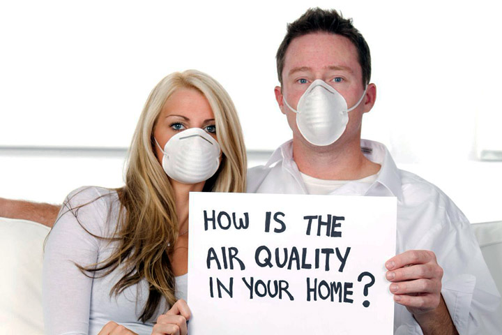 How to Improve Indoor Air Quality Without Chemicals