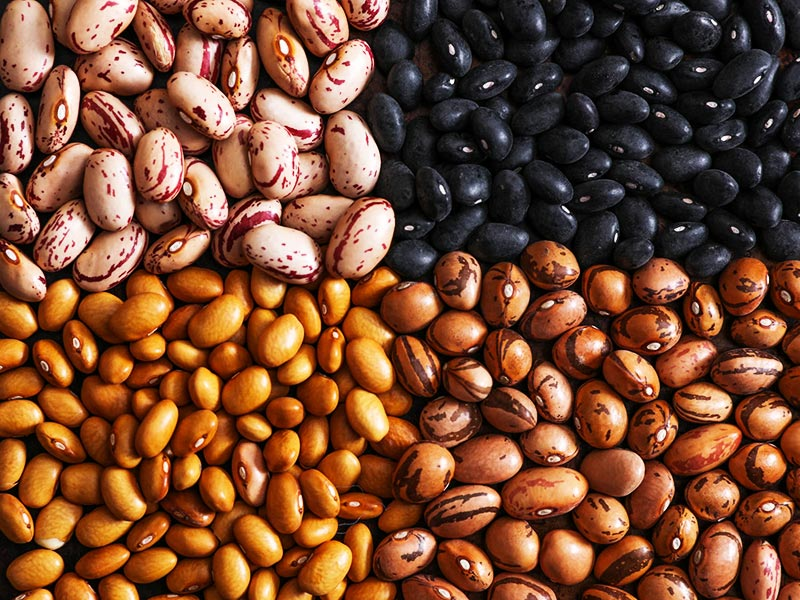 Beans Health Benefits and 5 Surprising Risks