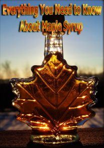 Everything You Need to Know About Maple Syrup