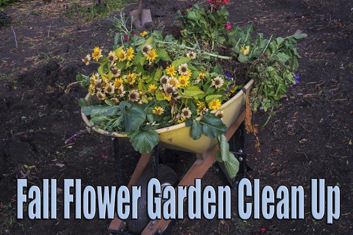 Fall Backyard Cleanup : Fall Flower Garden Clean Up Quiet Corner