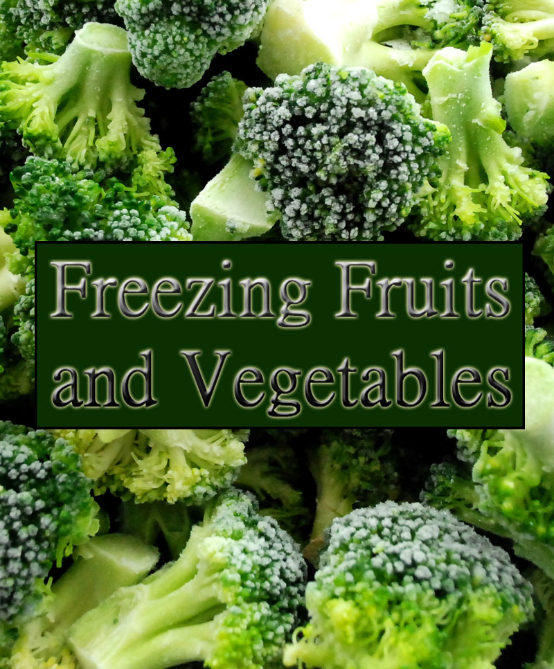 Guide to Freezing Fruits and Vegetables