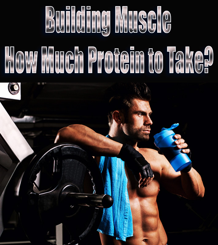 Building Muscle - How Much Protein to Take