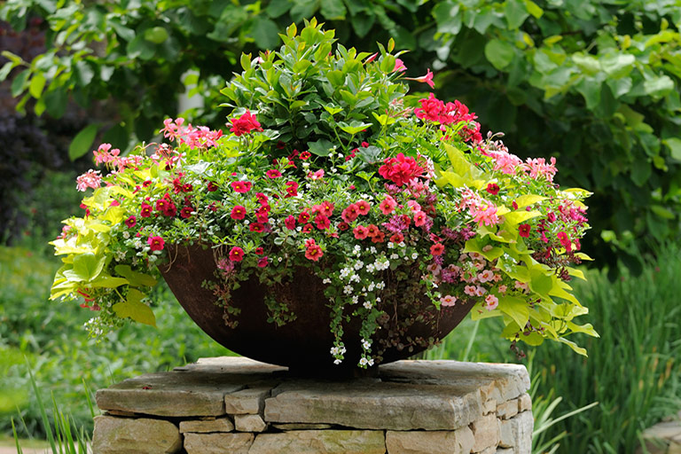 Quiet Corner Container Gardening Ideas: Container Gardening Is Not So Limiting After All