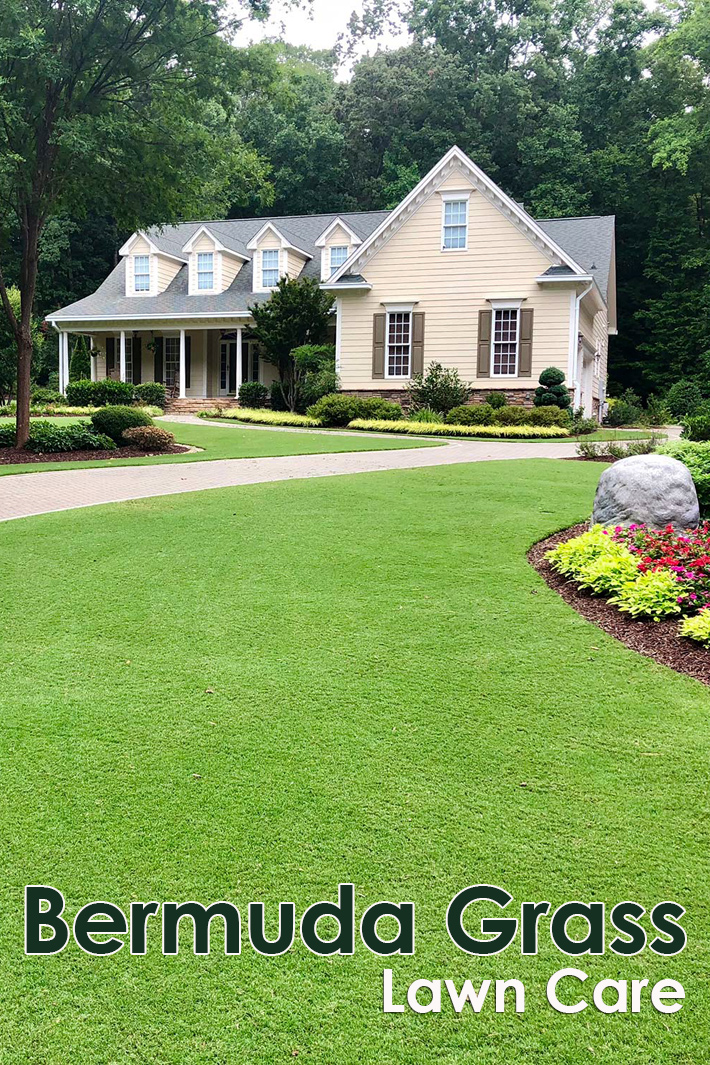 Bermuda Grass Lawn Care - Quiet Corner