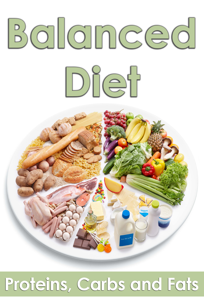 Proteins, Carbs and Fats - Balance Them and Fix Your Diet - Quiet Corner