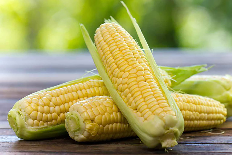 Sweet Corn Nutrition Facts and Health Benefits