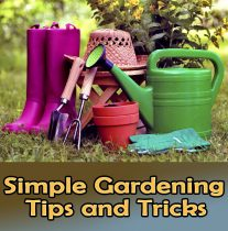 Simple Gardening Tips and Tricks