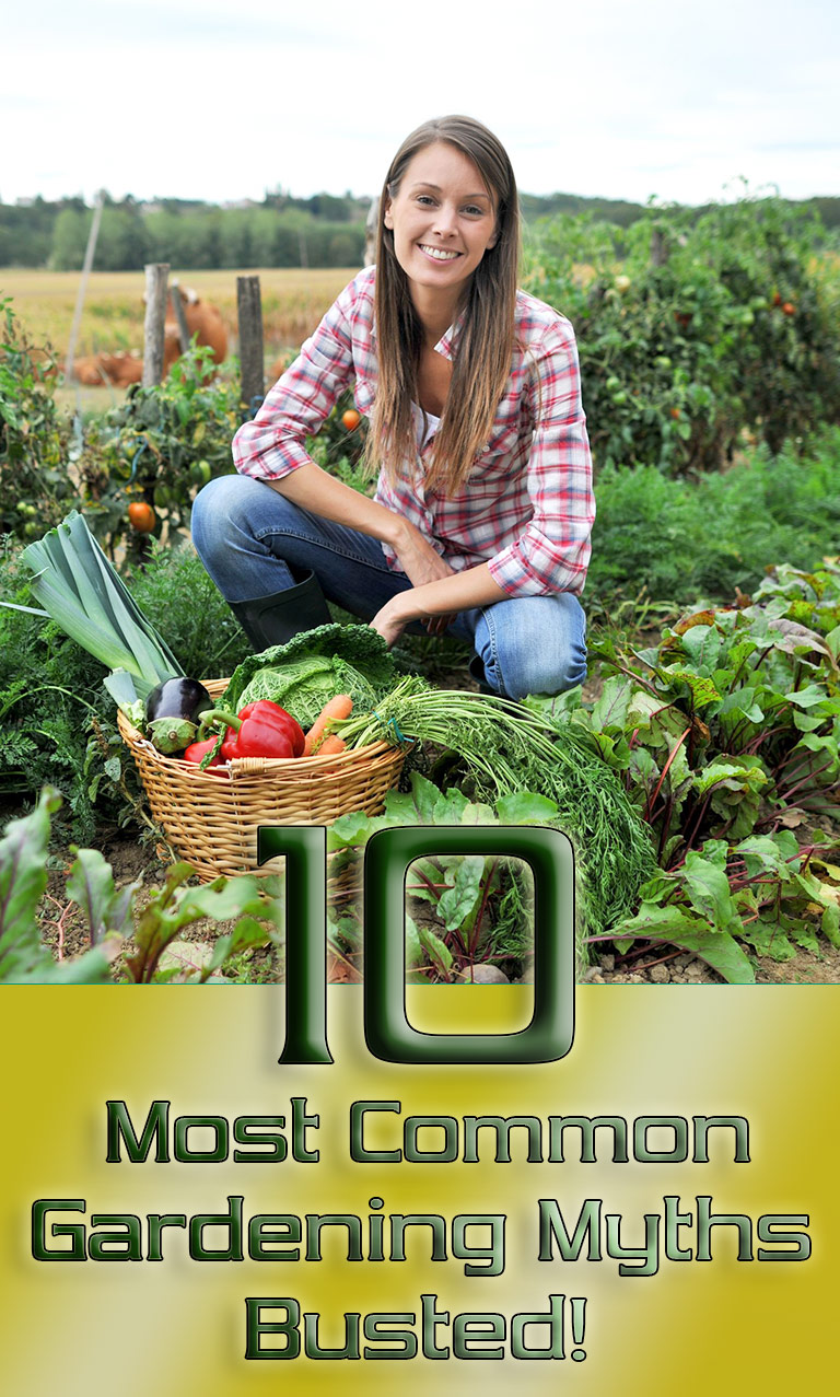 10 Most Common Gardening Myths Busted!