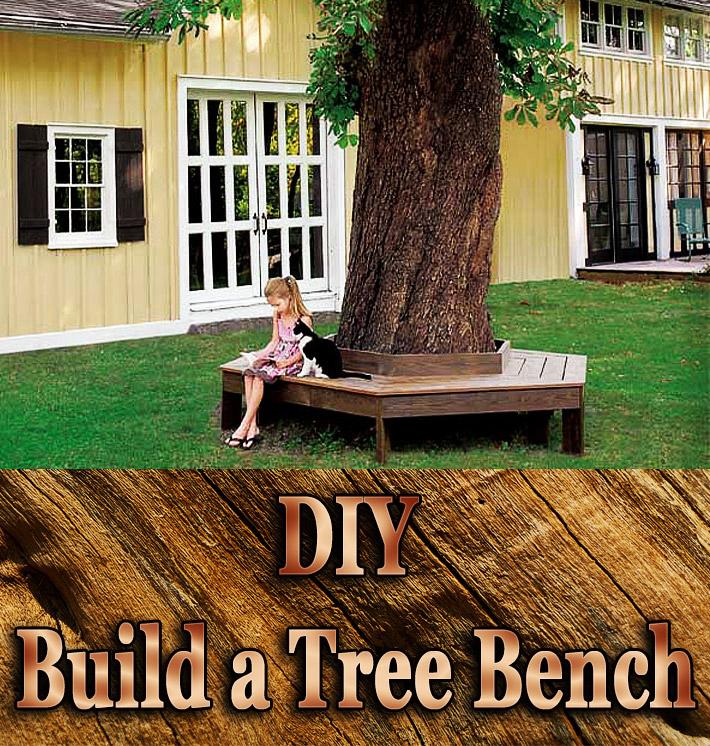 DIY - Build a Tree Bench - Quiet Corner