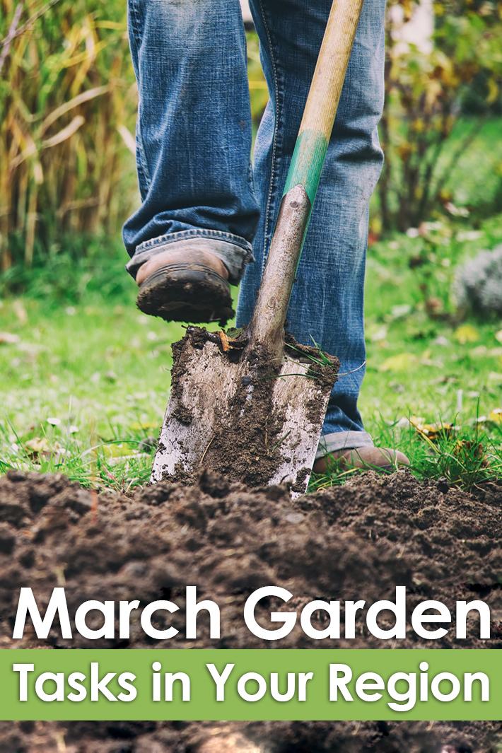 March Gardening Guide: March Garden Tasks in Your Region - Quiet Corner