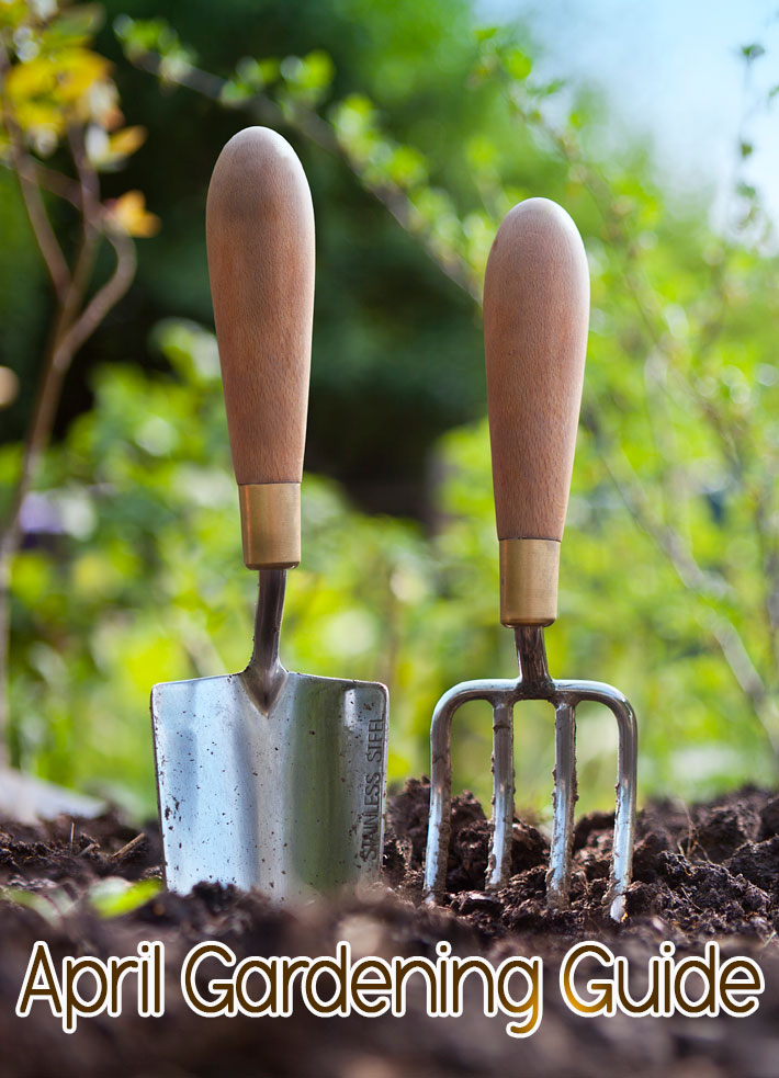 April Gardening Guide: April Garden Tasks in Your Region - Quiet Corner