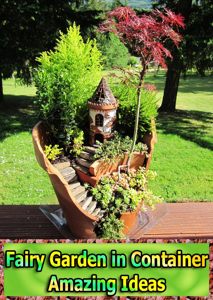 Quiet Corner:Fairy Garden In Container