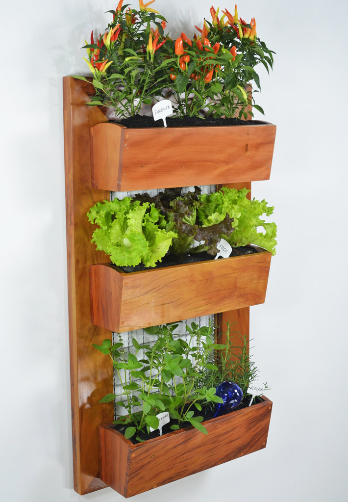 Helpful Tips for Vertical Gardening
