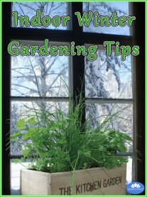 Indoor Winter Gardening Tips